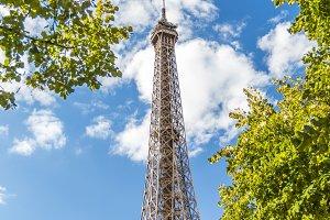 Eiffel Tower in green trees on blue