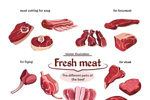 Sketch Cutting Beef Meat Parts Set