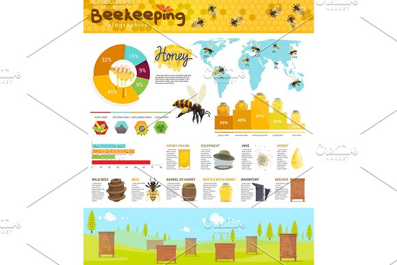 Beekeeping And Honey Production Infographic