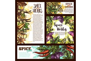 Spice, herb and aromatic vegetable sketch banner