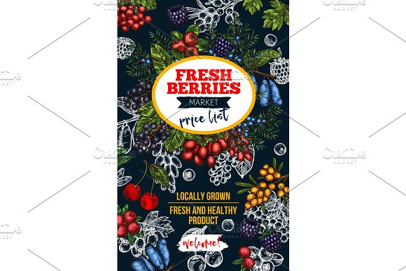 Berry Blackboard Banner With Fresh Wild Fruit