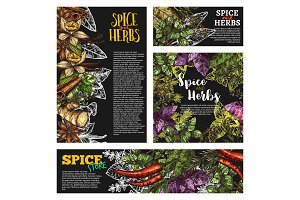 Spice and herb, food seasoning blackboard banner