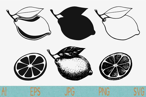 lemon set vector svg png jpeg
