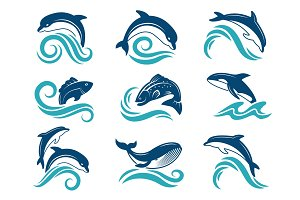 Pictures of dolphins and other marine animals. Logo design template