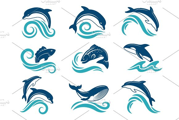 Pictures Of Dolphins And Other Marine Animals Logo Design Template