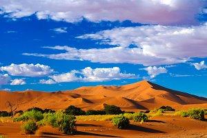 Sand dunes Namib-Naukluft national park, Namibia