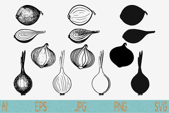 Bulb Onion Set Vector Svg Png