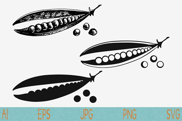 Green Peas Pea Pods Svg Png Jpeg