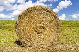 straw grass