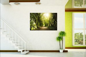 Art Print, Wall Art Photo
