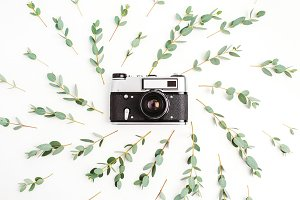 Retro photo camera & eucalyptus