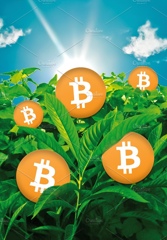 Bitcoins Growing At Nature Digital Composition