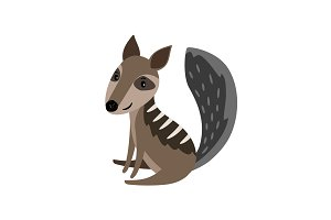 Numbat grey cartoon icon