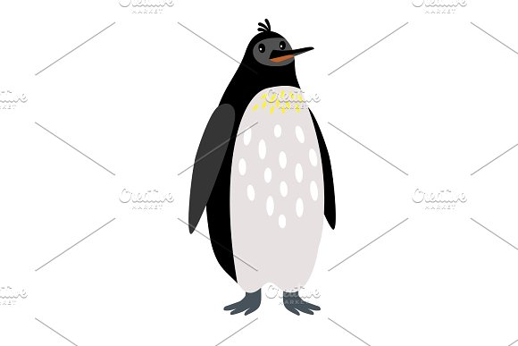 Penguin Arctic Animal Cartoon Icon