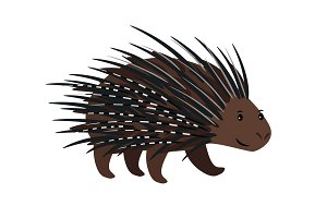 Porcupine icon isolated on white
