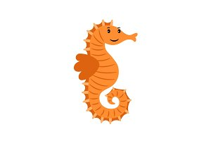 Sea horse marine animal