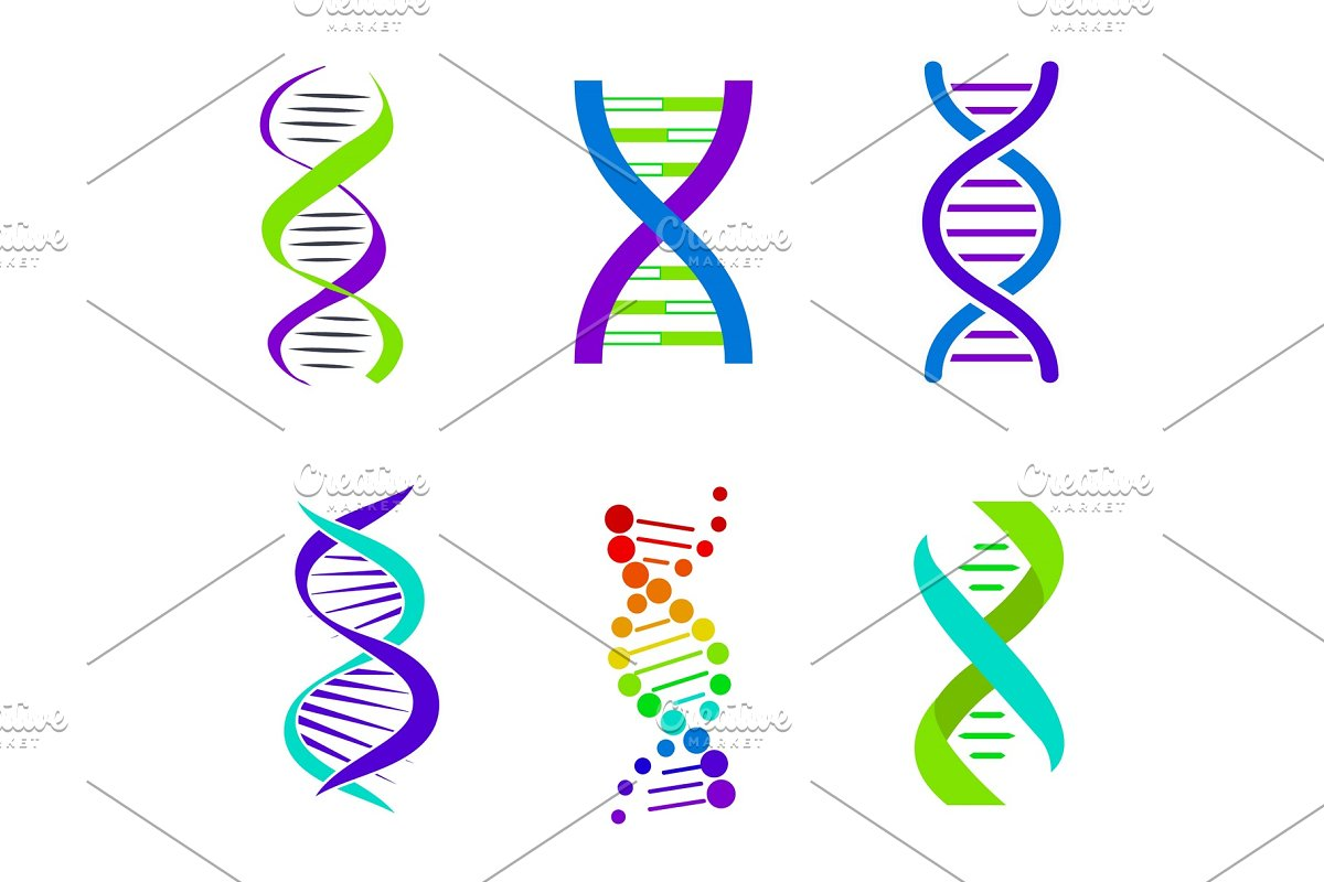 Colorful DNA Spirals, Bright Vector Illustration