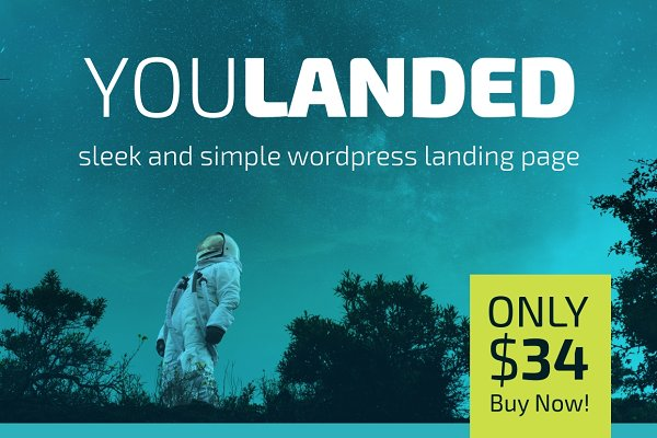 WordPress Landing Page Themes: Making Rad Things - You Landed - Wordpress Landing Page