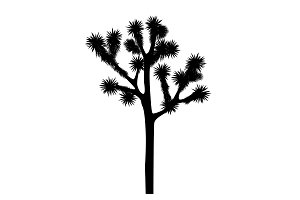 Joshua tree vector isolated on white background
