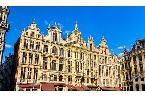 Buildings on the Grand Place - Brussels