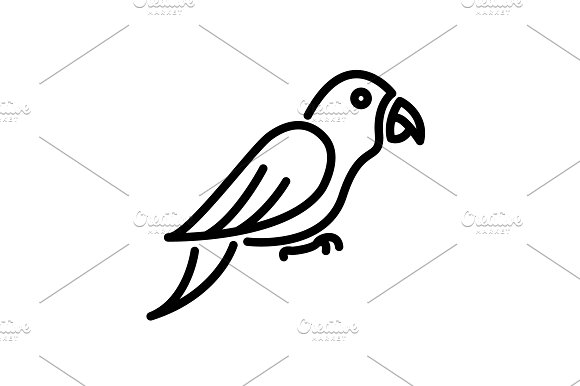 Web Line Icon Parrot Black
