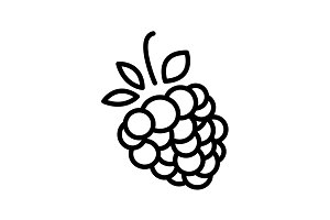 Web line icon. Raspberries black
