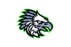 American Harpy Eagle Mascot