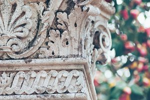 Antique column and roses