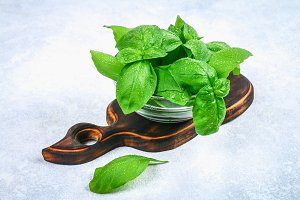 Green fresh homemade basil, spicy herb in a glass bowl on a cutting board on a gray concrete table.