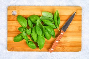Green fresh home basil, spicy herb on a cutting board with a knife on a gray concrete table.