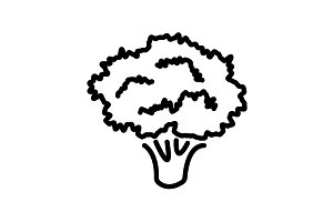 Web line icon. Broccoli black
