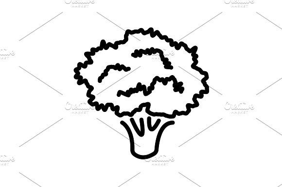 Web Line Icon Broccoli Black