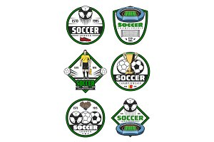 Soccer championship badge of football sport game
