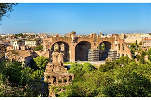 Basilica of Maxentius and Constantine, ruins in the Roman Forum