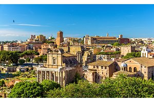 Temple of Antoninus and Faustina in the Roman Forum