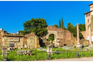 Rome, ruins of the Forum