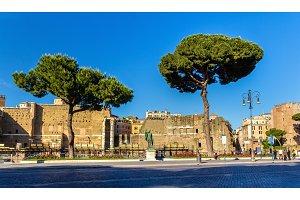 Statue of emperor Nerva in Rome