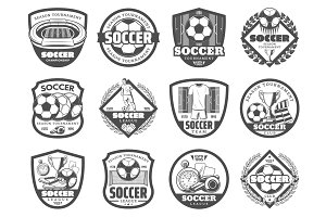 Football or soccer league heraldic shield badge