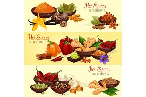 Hot spice banner of natural food ingredient