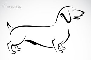 Vector of a dog (Dachshund). Pet.