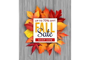 Autumn sale vector poster fall foliage leaf bunch