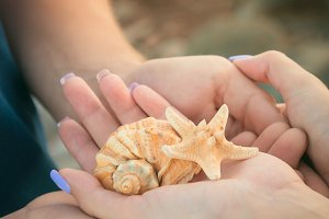 Her and him hands with shells