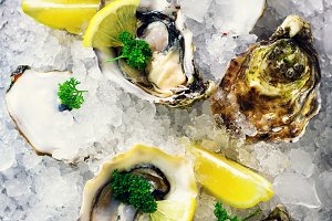 Fresh opened oysters, lemon, herbs, ice on concrete stone grey background. Top view, copy space. Square crop