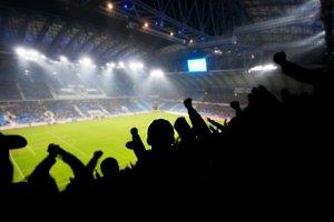 Fans celebrating a goal during match