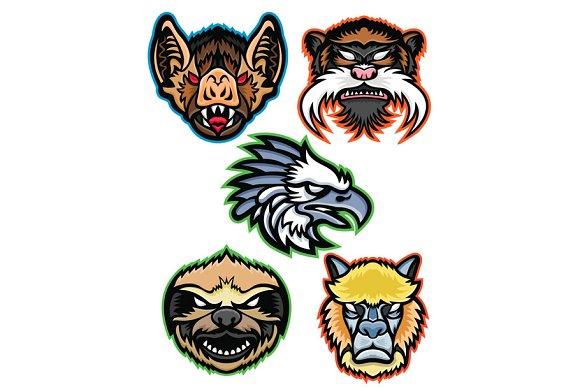 Amazon Wildlife Animals Mascot Colle