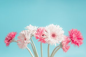 Pastel flowers bunch at blue
