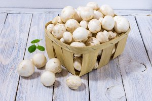 Many white champignons in a white wooden basket. Basil leafs. Cold mod.