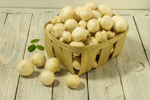 Many white champignons in a white wooden basket. Warm mod.
