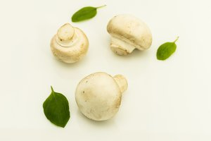 Three champignons with basil on a white background. Cold mood.