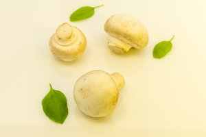 Three champignons with basil on a white background. Warm mood.